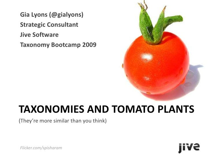 Gia Lyons (@gialyons)<br />Strategic Consultant<br />Jive Software<br />Taxonomy Bootcamp 2009<br />Taxonomies and Tomato ...