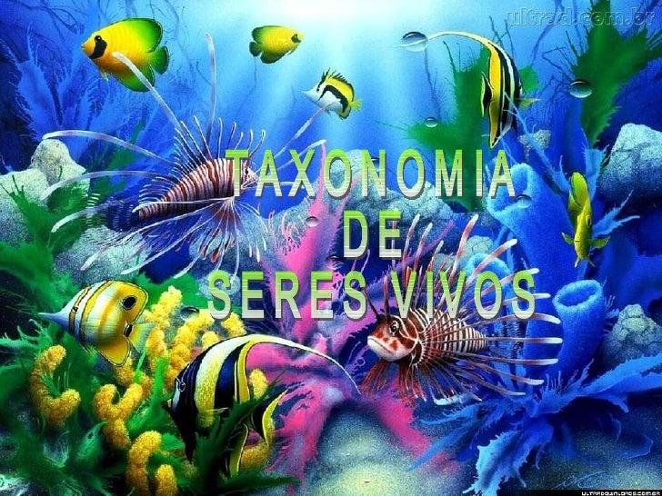 TAXONOMIA DE SERES VIVOS