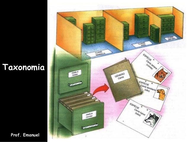 Taxonomia Prof. Emanuel