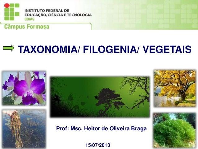 15/07/2013 Prof: Msc. Heitor de Oliveira Braga TAXONOMIA/ FILOGENIA/ VEGETAIS