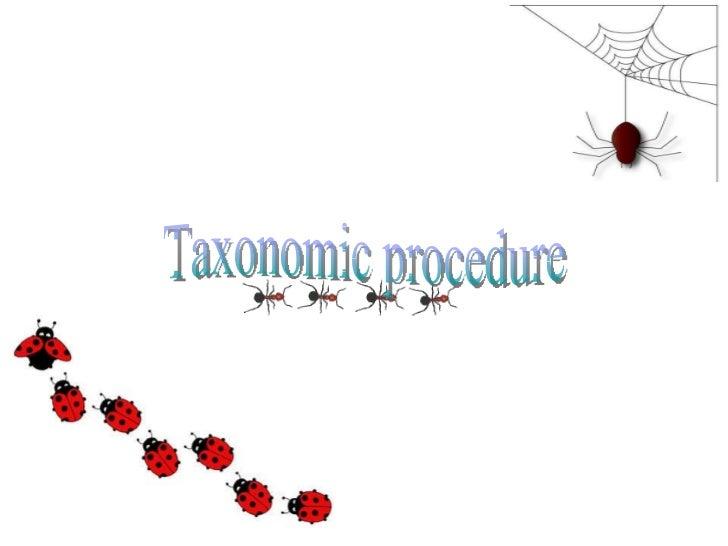 Taxonomic procedure