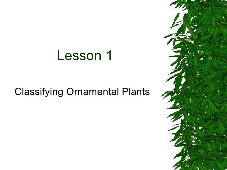 Lesson 1 Classifying Ornamental Plants
