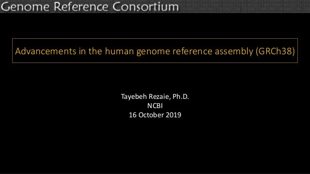 Advancements in the human genome reference assembly (GRCh38) Tayebeh Rezaie, Ph.D. NCBI 16 October 2019