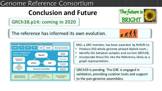 The future is BRIGHT Conclusion and Future GRCh38.p14: coming in 2020 MGI, a GRC member, has been awarded by NHGRI to: • P...