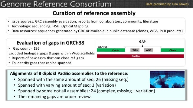 Curation of reference assembly • Issue sources: GRC assembly evaluation, reports from collaborators, community, literature...