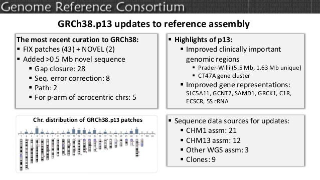 GRCh38.p13 updates to reference assembly The most recent curation to GRCh38:  FIX patches (43) + NOVEL (2)  Added >0.5 M...