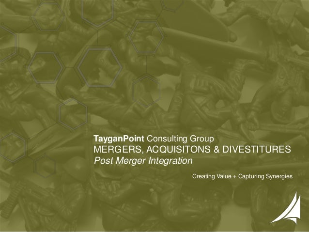 1 | Copyright © 2016 TayganPoint Consulting Group, All rights reserved. TayganPoint Consulting Group MERGERS, ACQUISITONS ...