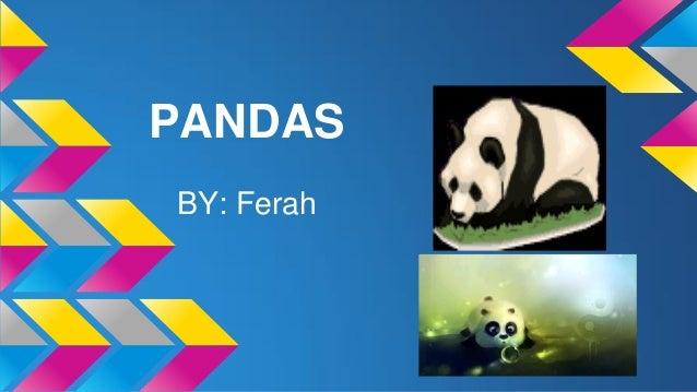 PANDAS BY: Ferah