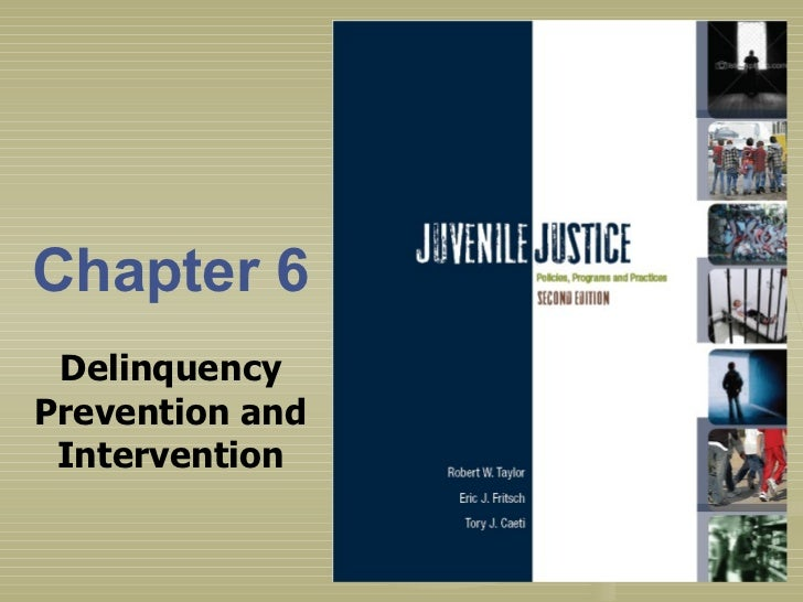 Chapter 6 Delinquency Prevention and Intervention