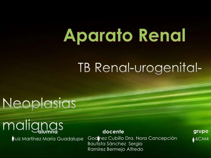 Aparato Renal<br />TB Renal-urogenital-<br />Neoplasias malignas<br />grupo<br />alumna<br />docente<br />Godínez Cubillo ...