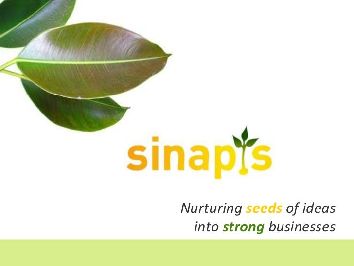 Nurturing seeds of ideasinto strongbusinesses<br />