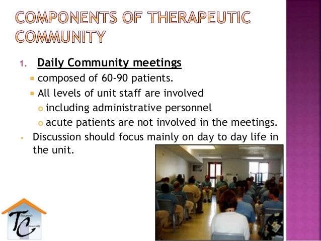 1. Daily Community meetings  composed of 60-90 patients.  All levels of unit staff are involved  including administrati...