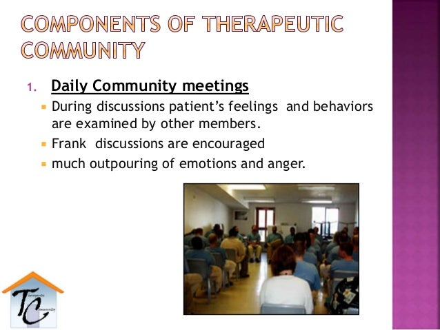 1. Daily Community meetings  During discussions patient's feelings and behaviors are examined by other members.  Frank d...