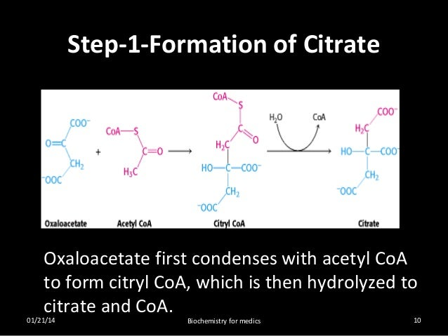 TCA cycle- steps, regulation and significance  TCA cycle- step...