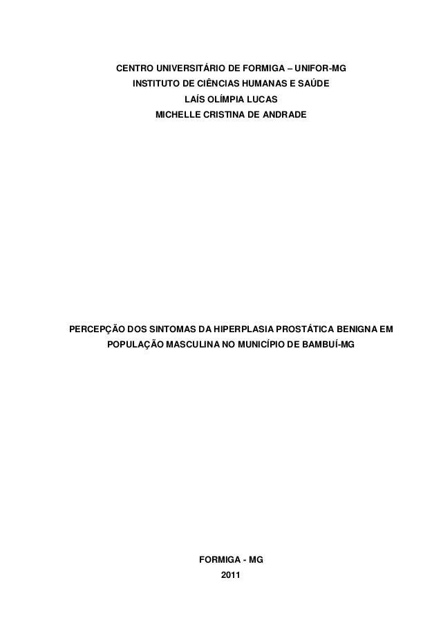CENTRO UNIVERSITÁRIO DE FORMIGA – UNIFOR-MG  INSTITUTO DE CIÊNCIAS HUMANAS E SAÚDE  LAÍS OLÍMPIA LUCAS  MICHELLE CRISTINA ...