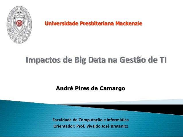 André Pires de Camargo Faculdade de Computação e Informática Orientador: Prof. Vivaldo José Bretenitz Universidade Presbit...
