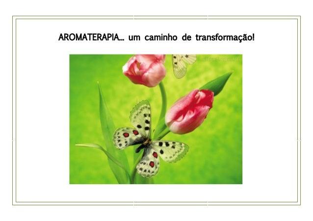 AROMATERAPIA... um caminho de transformação!