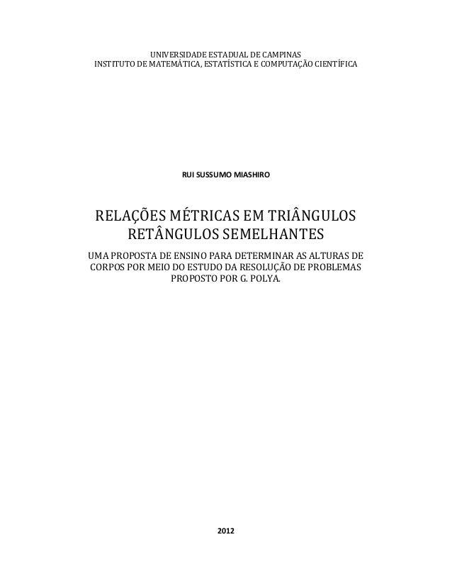 UNIVERSIDADE ESTADUAL DE CAMPINAS INSTITUTO DE MATEMÁTICA, ESTATÍSTICA E COMPUTAÇÃO CIENTÍFICA  RUI SUSSUMO MIASHIRO  RELA...