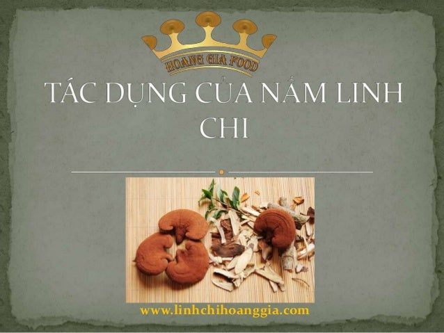 www.linhchihoanggia.com