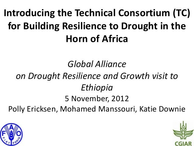 Introducing the Technical Consortium (TC) for Building Resilience to Drought in the               Horn of Africa          ...