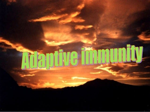 Adaptive Immunity: Specific Immune Response (e.g., antibody) against a particular microorganism is an adaptive immune resp...