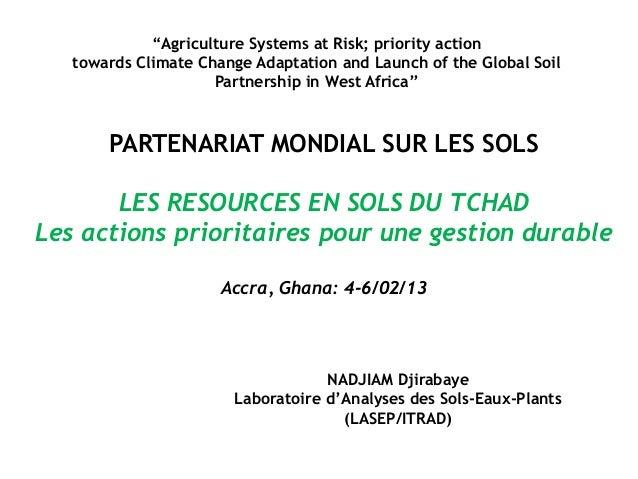 PARTENARIAT MONDIAL SUR LES SOLS LES RESOURCES EN SOLS DU TCHAD Les actions prioritaires pour une gestion durable Accra, G...