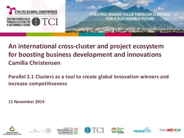 An international cross-cluster and project ecosystem  for boosting business development and innovations  Camilla Christens...