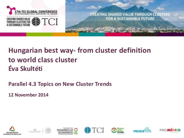 Hungarian best way- from cluster definition  to world class cluster  Éva Skultéti  Parallel 4.3 Topics on New Cluster Tren...