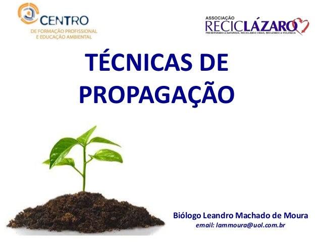 Biólogo Leandro Machado de Moura email: lammoura@uol.com.br TÉCNICAS DE PROPAGAÇÃO