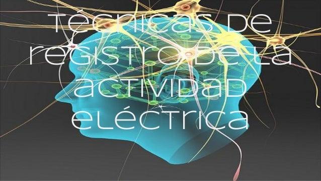 Técnicas de registro de la actividad eléctrica