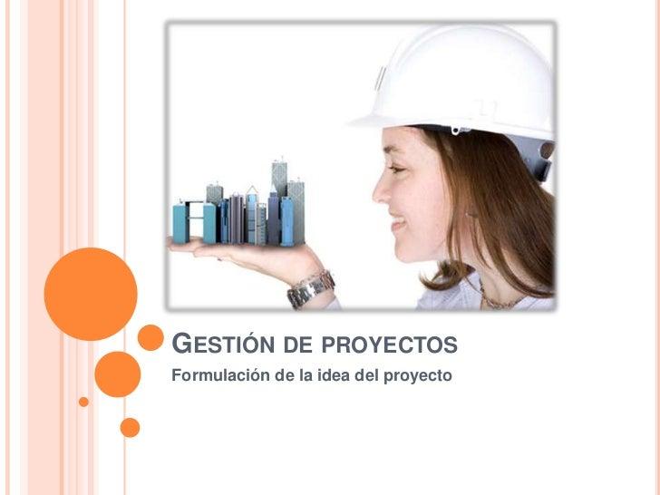 Gestión de proyectos<br />Formulación de la idea del proyecto<br />