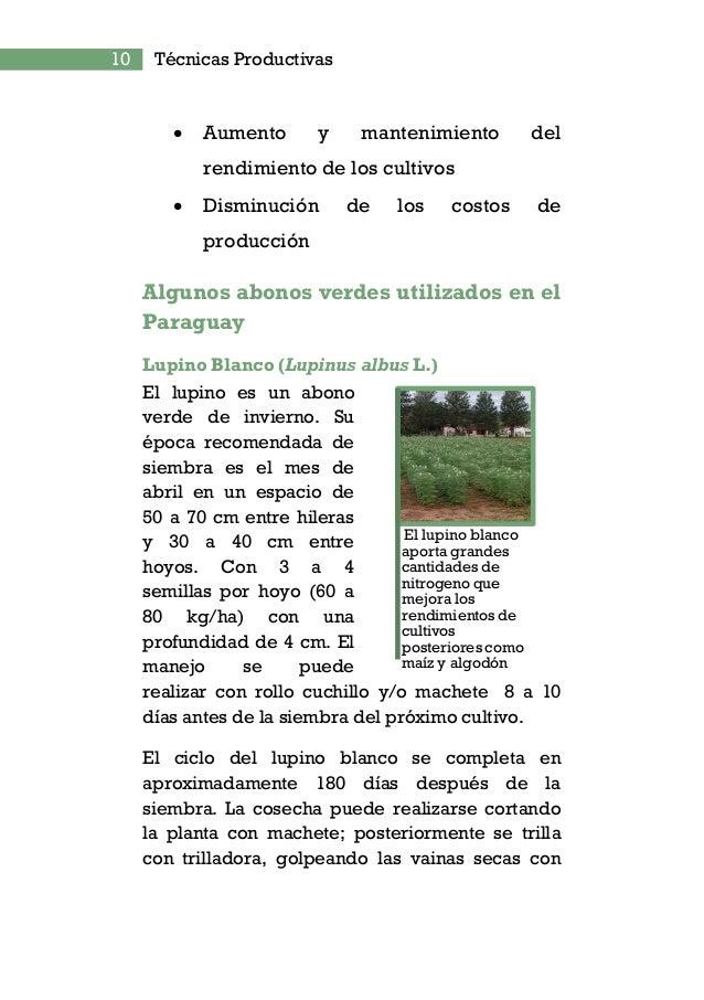 12 Técnicas Productivas Puede ser utilizada para parcelas en descanso por un periodo de dos a cuatro años o asociado a maí...