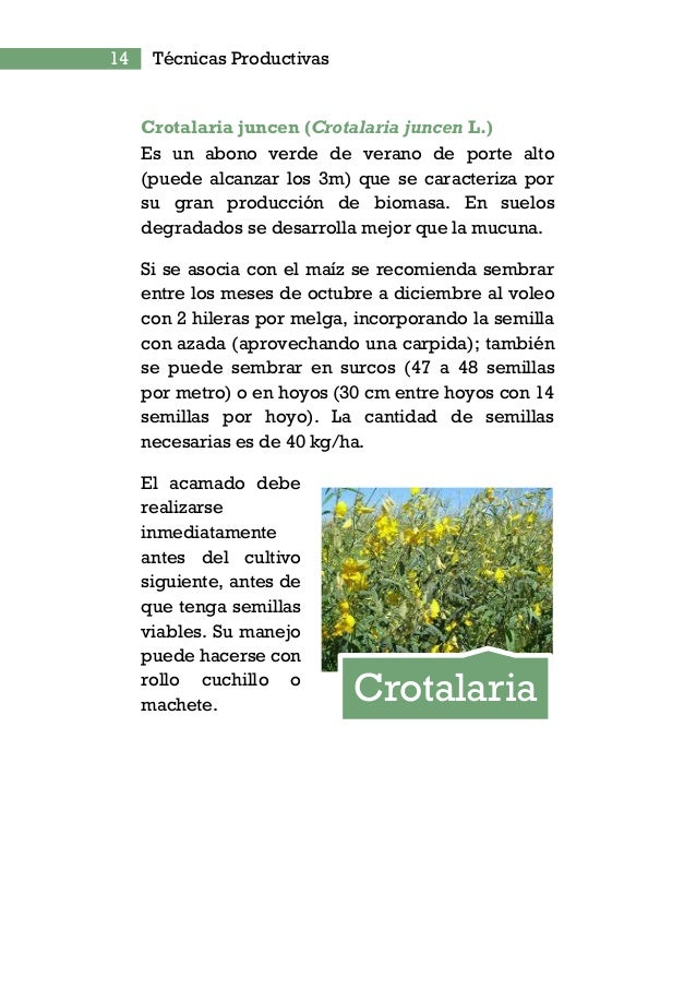 LOS DEFENSIVOS ORGÁNICOS Algunas plantas contienen componentes que son tóxicos a los insectos, cuando estos compuestos son...
