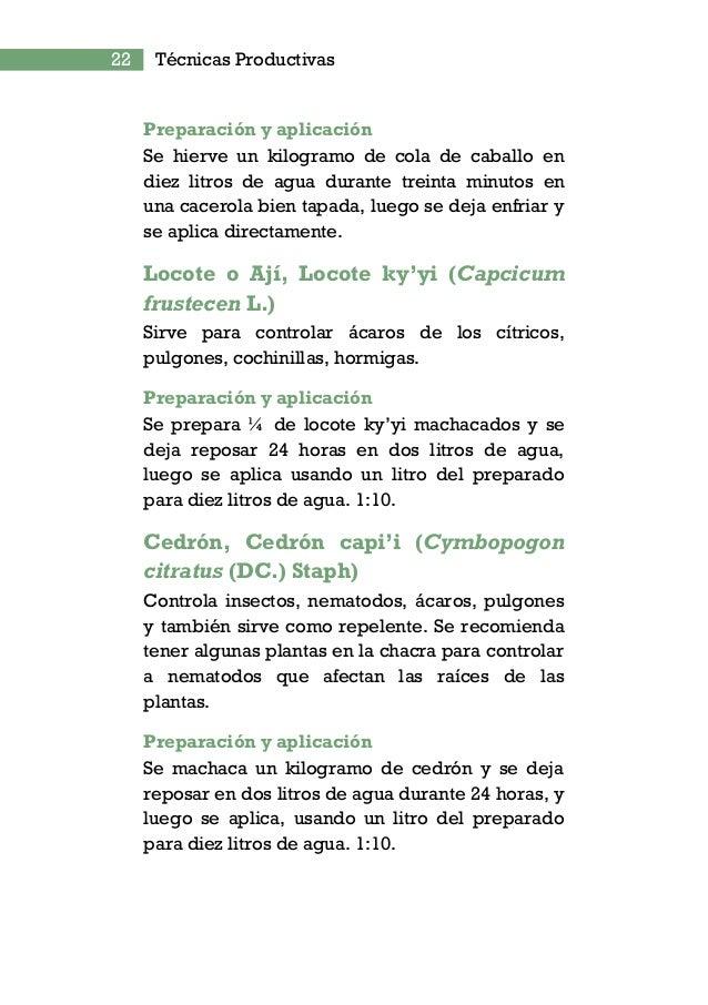 Ruta Mcal Estigarribia Km. 10, 5 San Lorenzo,Paraguay +595 21 585606/10 +595 21 585612 FACULTAD DE CIENCIAS AGRARIAS Proye...