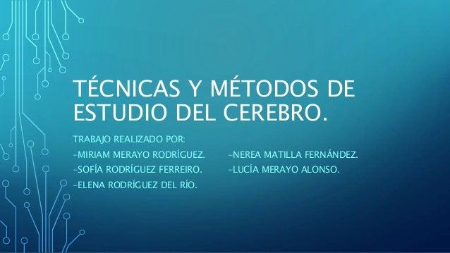 TÉCNICAS Y MÉTODOS DE ESTUDIO DEL CEREBRO. TRABAJO REALIZADO POR: -MIRIAM MERAYO RODRÍGUEZ. -NEREA MATILLA FERNÁNDEZ. -SOF...