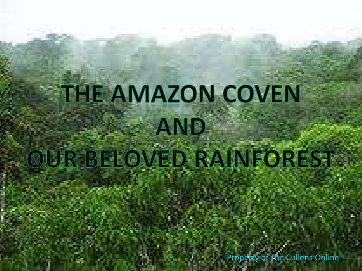 The Amazon Coven<br />And<br />Our beloved Rainforest<br />Property of The Cullens Online<br />