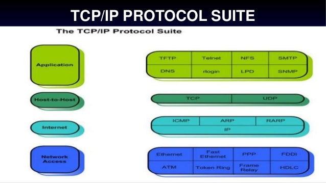 TCP/IP and UDP protocols