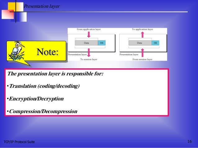 TCP/IP Protocol Suite 16 The presentation layer is responsible for: •Translation (coding/decoding) •Encryption/Decryption ...