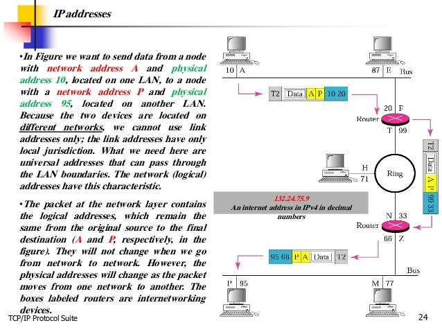 TCP/IP Protocol Suite 24 IP addresses •In Figure we want to send data from a node with network address A and physical addr...