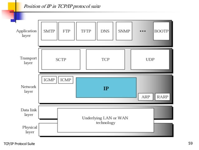 TCP/IP Protocol Suite 59 Position of IP in TCP/IP protocol suite