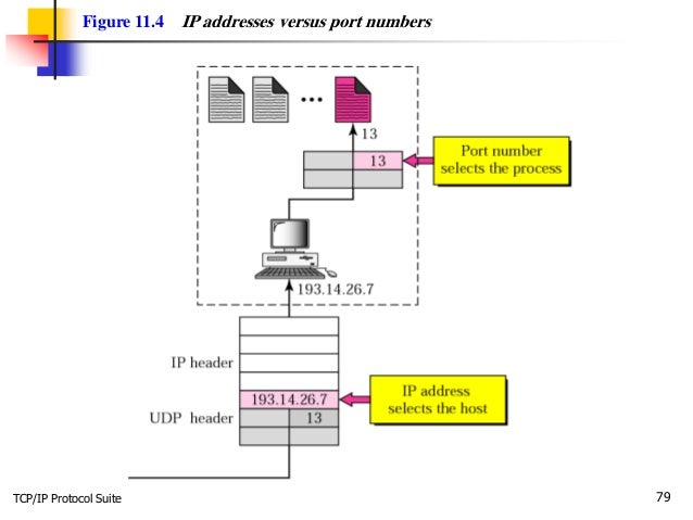 TCP/IP Protocol Suite 79 Figure 11.4 IP addresses versus port numbers