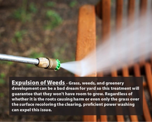 Expulsion of Weeds - Grass, weeds, and greenery development can be a bad dream for yard so this treatment will guarantee t...