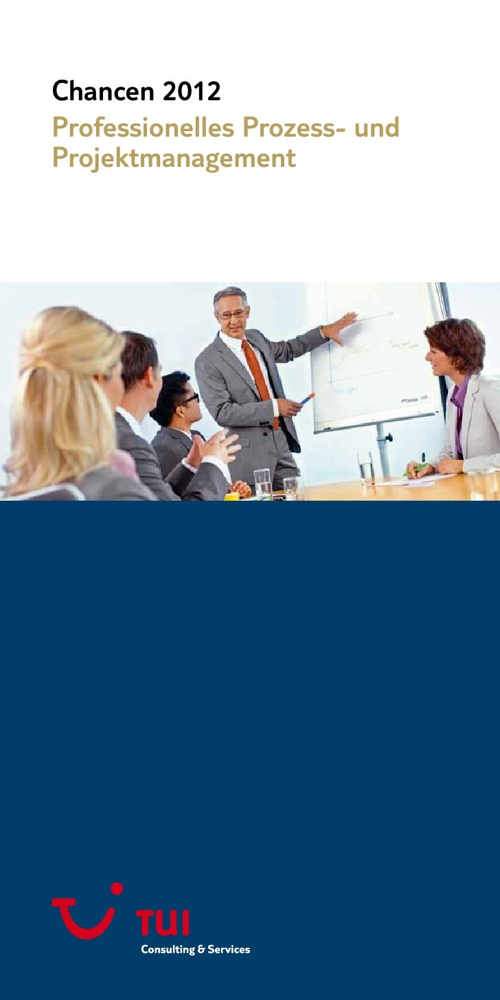 Chancen 2012Professionelles Prozess- undProjektmanagement