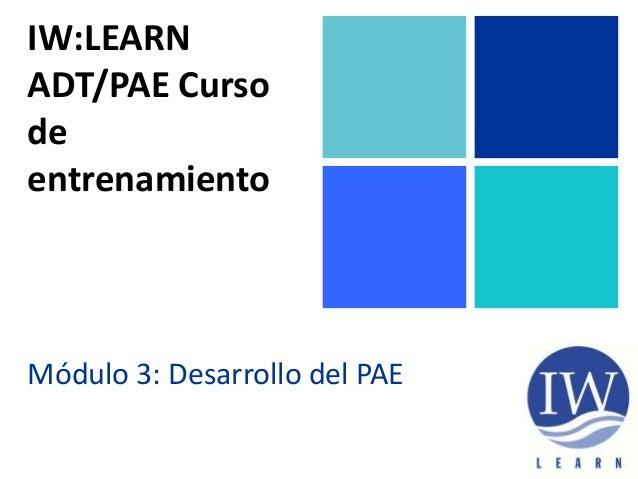 IW:LEARN ADT/PAE Curso de entrenamiento Módulo 3: Desarrollo del PAE