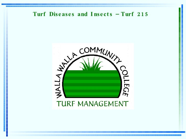 Turf Diseases and Insects – Turf 215