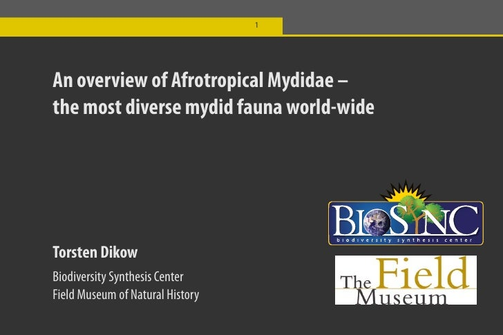 1     An overview of Afrotropical Mydidae – the most diverse mydid fauna world-wide     Torsten Dikow Biodiversity Synthes...