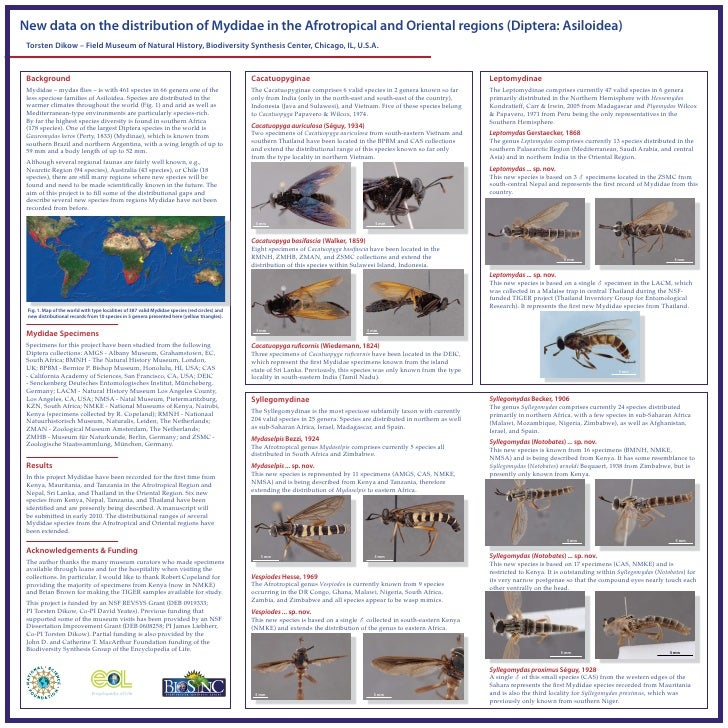 New data on the distribution of Mydidae in the Afrotropical and Oriental regions (Diptera: Asiloidea)  Torsten Dikow – Fie...