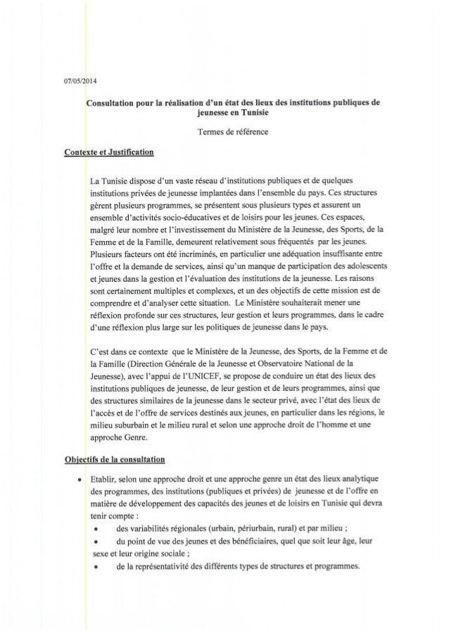 Tdr   etat des lieux des institutions publiques de jeunesse en tunisie