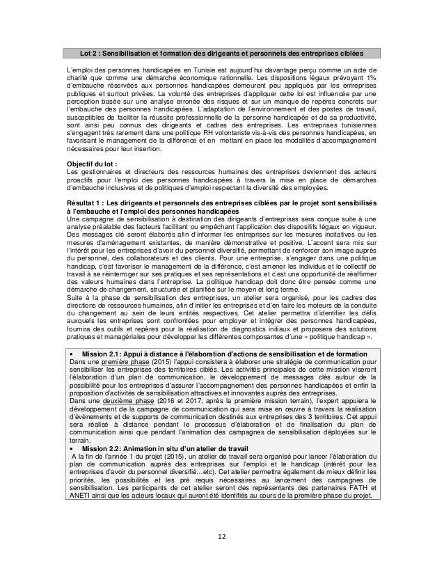 Lot 2 : Sensibilisation et formation des dirigeants et personnels des entreprises ciblées L'emploi des personnes handicapé...