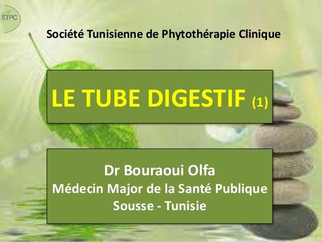 LE TUBE DIGESTIF (1) Société Tunisienne de Phytothérapie Clinique Dr Bouraoui Olfa Médecin Major de la Santé Publique Sous...